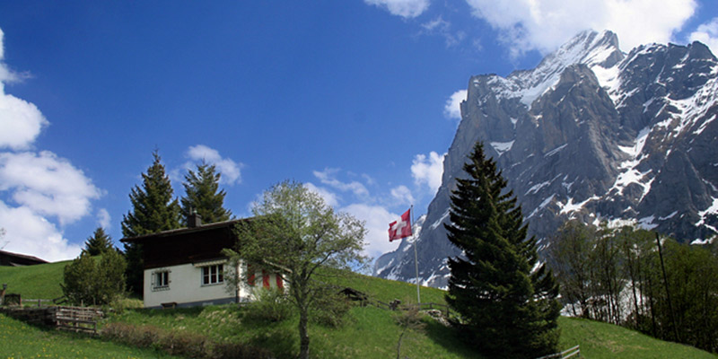 Switzerland flag and alps